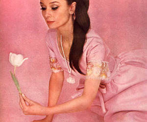 audrey hepburn, woman, and flower image