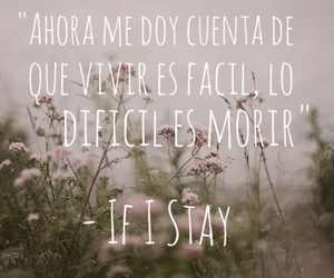 if i stay, si decido quedarme, and books image
