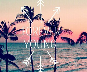 forever, ocean, and palm image