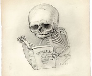 skull, book, and drawing image