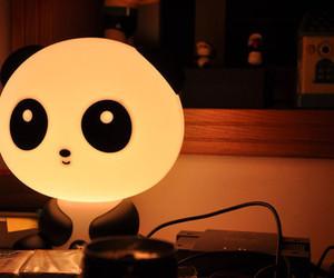 panda and light image