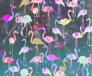 wallpaper and animal image