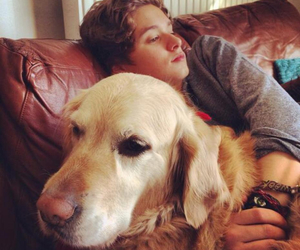 the vamps, brad, and dog image