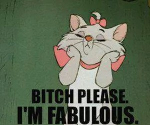 fabulous, bitch, and cat image