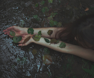 creek, forest, and girl image