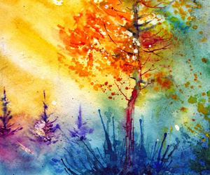 autumn, color, and forest image