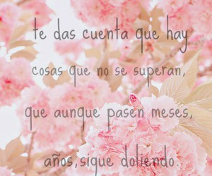 frases, true, and tiempo image