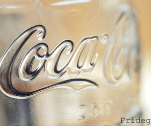 coca cola, drink, and fridegg image