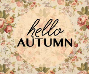 autumn, hello, and flowers image