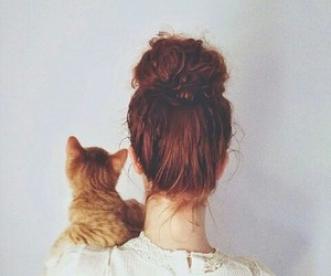 cat and cool image