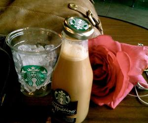 color, rose, and starbucks image