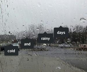 cold, grunge, and rain image