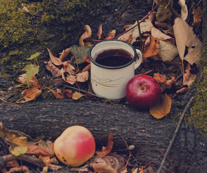 autumn, apples, and coffee image
