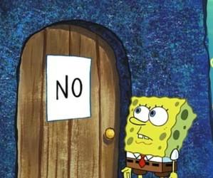 no, spongebob, and sponge bob image