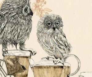 owl, tea, and art image
