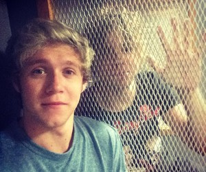 niall horan, one direction, and ashton irwin image