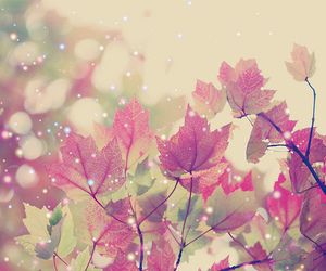 autumn, leaves, and pink image