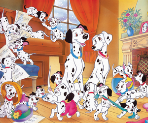 dalmatian, dogs, and family image
