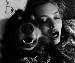 amanda seyfried, dog, and finn image