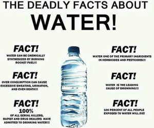 water, funny, and facts image