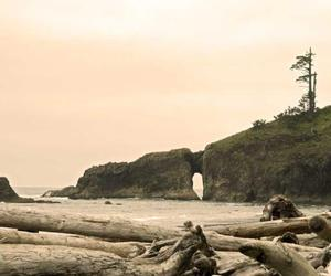 beach, love, and la push image