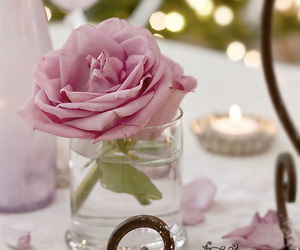rose, flower, and pink image