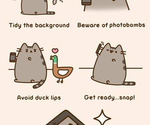 cat, pusheen, and selfie image