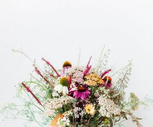 bouquet, wild, and color image
