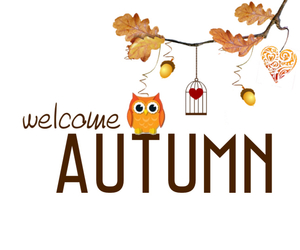 autumn, welcome, and owl image