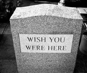 wish you were here, black and white, and Pink Floyd image