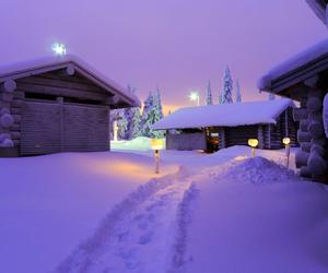 snow, purple, and winter image