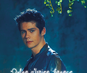 boy, teen wolf, and dylan o'brien image