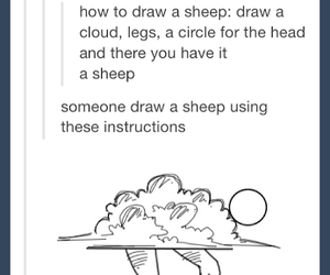 funny, legs, and sheep image