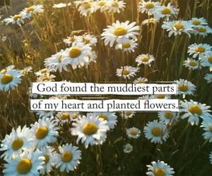 beautiful, faith, and flowers image