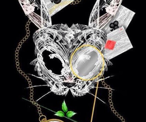 alice in wonderland, mask, and rabbit image