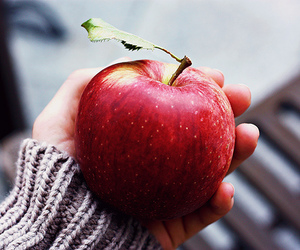 apple, fruit, and red image