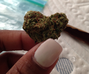 heart, high, and loveweed image