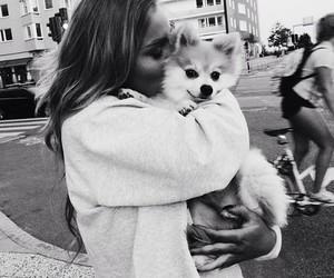 dog, girl, and black and white image