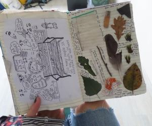 dirt, drawing, and leaves image