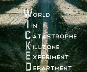 the maze runner, wicked, and maze runner image