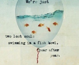 Pink Floyd and quote image