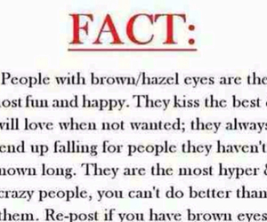 fact, brown eyes, and eyes image