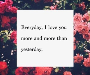 love, quotes, and everyday image