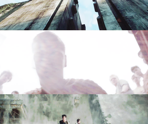 the maze runner image