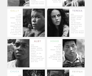 black and white, cast, and the maze runner image