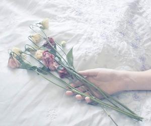 Image by úlfur