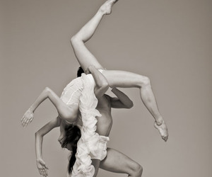 dance, holland, and performance art image