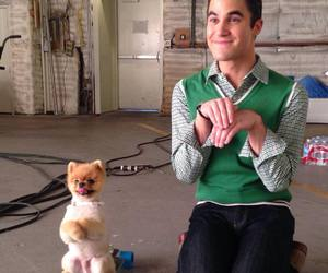 glee, darren criss, and cute image