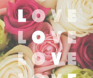 love, rose, and wallpaper image
