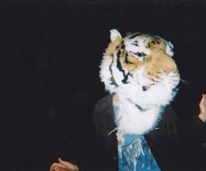 tiger, indie, and boy image